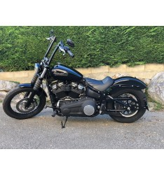Support de plaque Harley Davidson 2018 mini feu leds